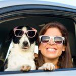 seguridad certificado de mascota de apoyo emocional